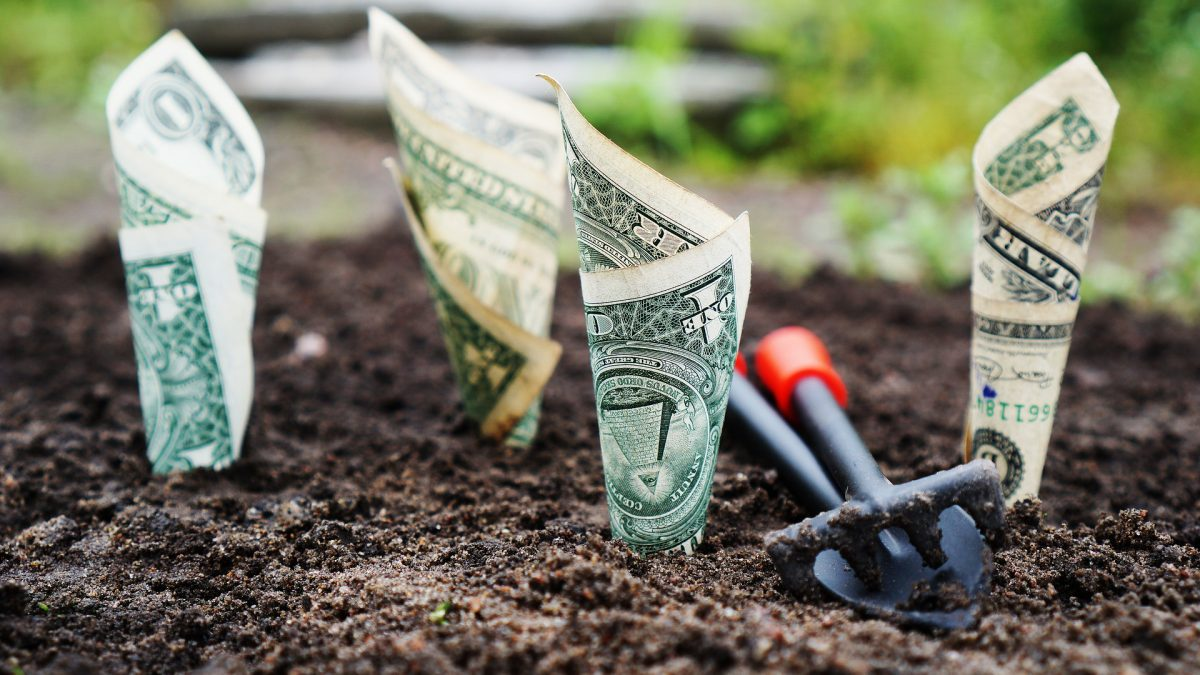 4 criterii de care trebuie sa tii cont cand faci investitii